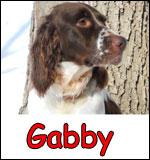 Gabby_sm
